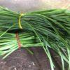 Garlic Chives Food Basket Farm Jamaica
