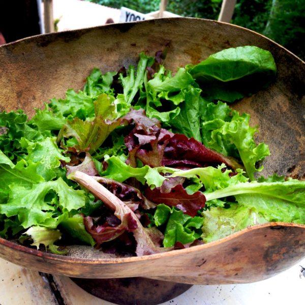 Mixed Salad Green Farm Basket Farm Jamaica