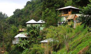 Jamaica Mount Edge Guest House Views