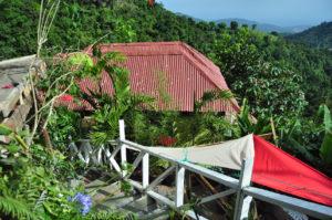 Jamaica EITS Cafe